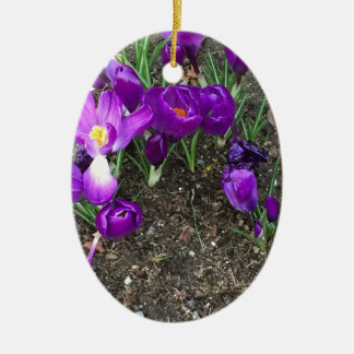 Welcome Spring Ceramic Oval Decoration
