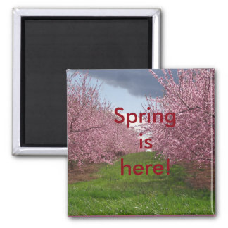 Welcome Spring Magnet
