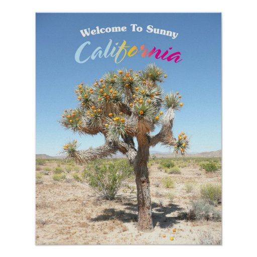 Welcome To Sunny California Poster