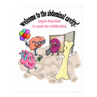 Welcome to the abdominal cavity! postcard