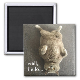 """""""Well, hello..."""" from Fiona, the British Blue Cat Square Magnet"""