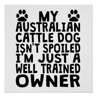 Well Trained Australian Cattle Dog Owner Poster