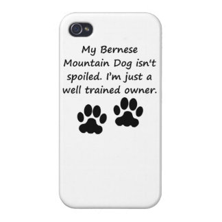 Well Trained Bernese Mountain Dog Owner iPhone 4/4S Case