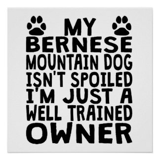 Well Trained Bernese Mountain Dog Owner Poster
