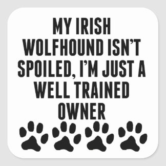 Well Trained Irish Wolfhound Owner Square Stickers