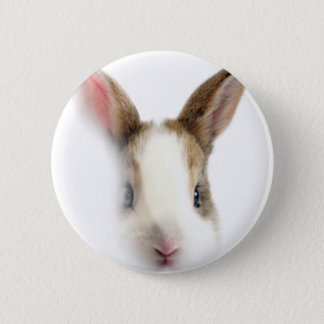 Wellcoda Animal Bunny Rabbit Cute Pet 6 Cm Round Badge