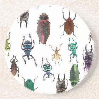 Wellcoda Beetle Type Habitat Insect Life Coaster