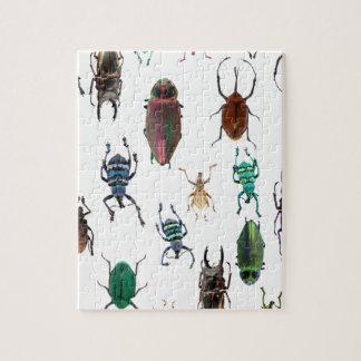 Wellcoda Beetle Type Habitat Insect Life Jigsaw Puzzle