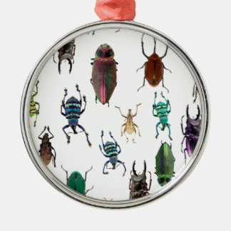 Wellcoda Beetle Type Habitat Insect Life Silver-Colored Round Decoration