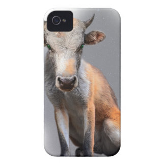 Wellcoda Fox Cow Freak Mutant Fake Animal iPhone 4 Cases