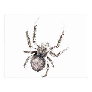 Wellcoda Huge Spider Tarantula Massive Postcard