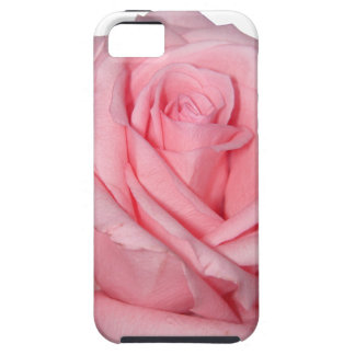 Wellcoda Pink Rose Romantic Flower Power iPhone 5 Cover