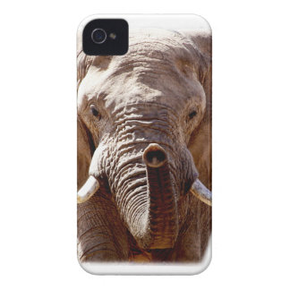 Wellcoda Wild Elephant Head Animal Face iPhone 4 Cover