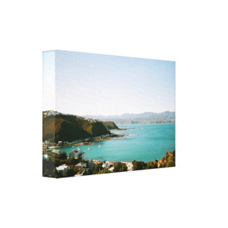 Wellington New Zealand Canvas Print