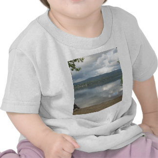 Wellington State Park Shirt