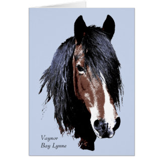Welsh cob portrait birthday card