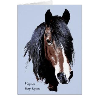 Welsh cob portrait birthday greeting card