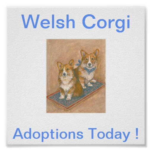 Welsh Corgi Adoptions Today Sign Posters