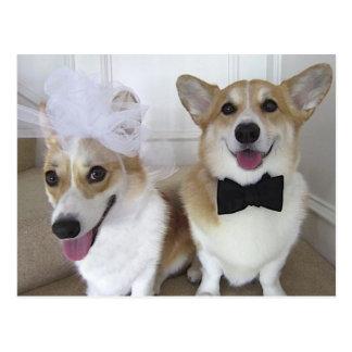 WELSH CORGI BRIDE AND GROOM POSTCARD
