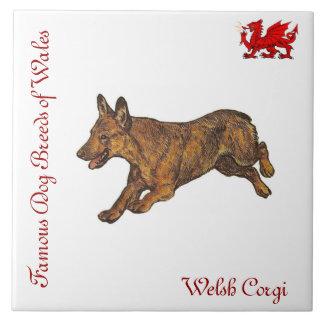 Welsh Corgi Collector's Tile