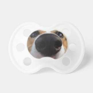 Welsh Corgi Dog Nose Collection Baby Pacifiers