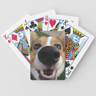 Welsh Corgi Dog Nose Collection Poker Deck