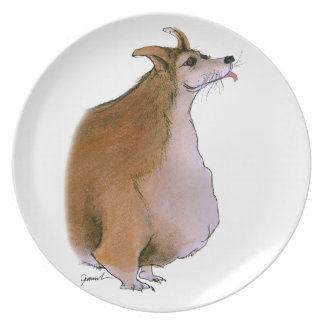 Welsh Corgi, tony fernandes Plate