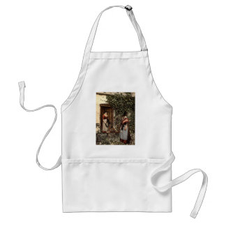Welsh costumes, Wales rare Photochrom Standard Apron