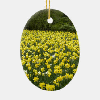 Welsh daffodils, Cymru am byth Christmas Ornament