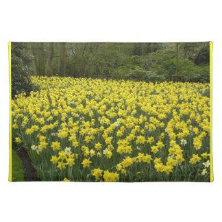 Welsh daffodils, Cymru am byth Placemat