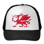 Welsh dragon design hat
