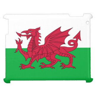 Welsh dragon flag case for the iPad