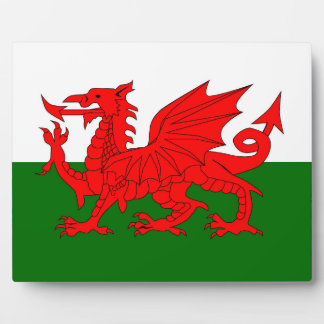 Welsh Dragon Flag Plaque