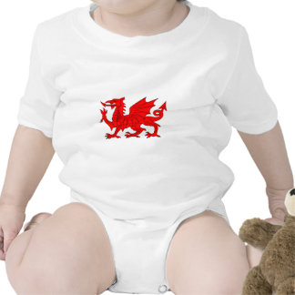 Welsh Dragon Rompers