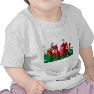 Welsh Dragon Rugby Ball Flag T Shirts
