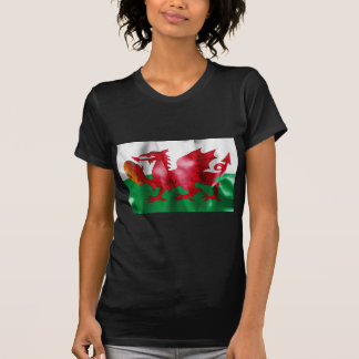 Welsh Dragon Rugby Ball Flag Women's T-Shirt