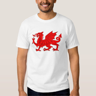 Welsh Dragon T Shirts