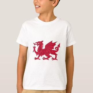 Welsh dragon tee shirts