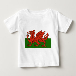 Welsh Flag Baby T-Shirt