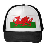 Welsh flag designs trucker hat