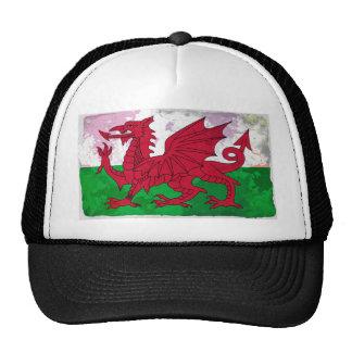 Welsh Flag Grunge Cap