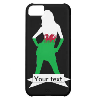 Welsh flag iPhone 5C case