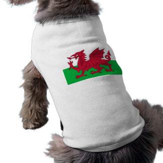 welsh flag pet clothing
