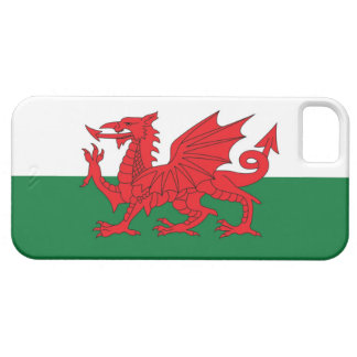 Welsh Flag Phone Case iPhone 5 Cover