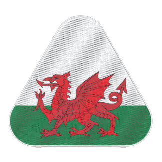 Welsh Flag Speaker