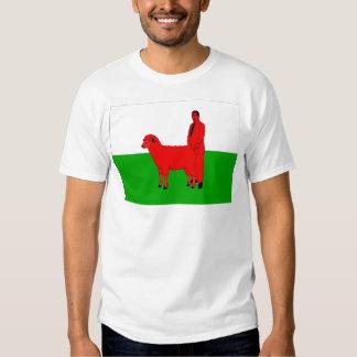 Welsh Flag Spoof T-Shirt