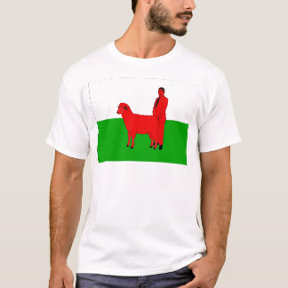 Welsh Flag Spoof T-Shirt