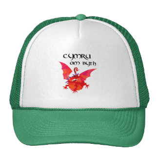 Welsh Language Red Dragon 'Wales Forever!' Cap