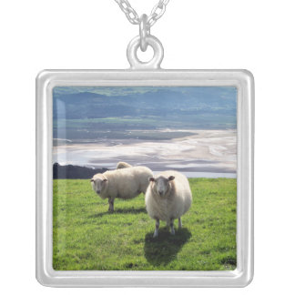 WELSH MOUNTAIN SHEEP SILVER PLATED NECKLACE