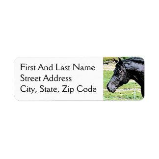 Welsh Pony Black Horse Head Ink Drawing Art Return Address Label